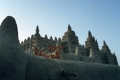Die Wahrsagerin von Timbuktu