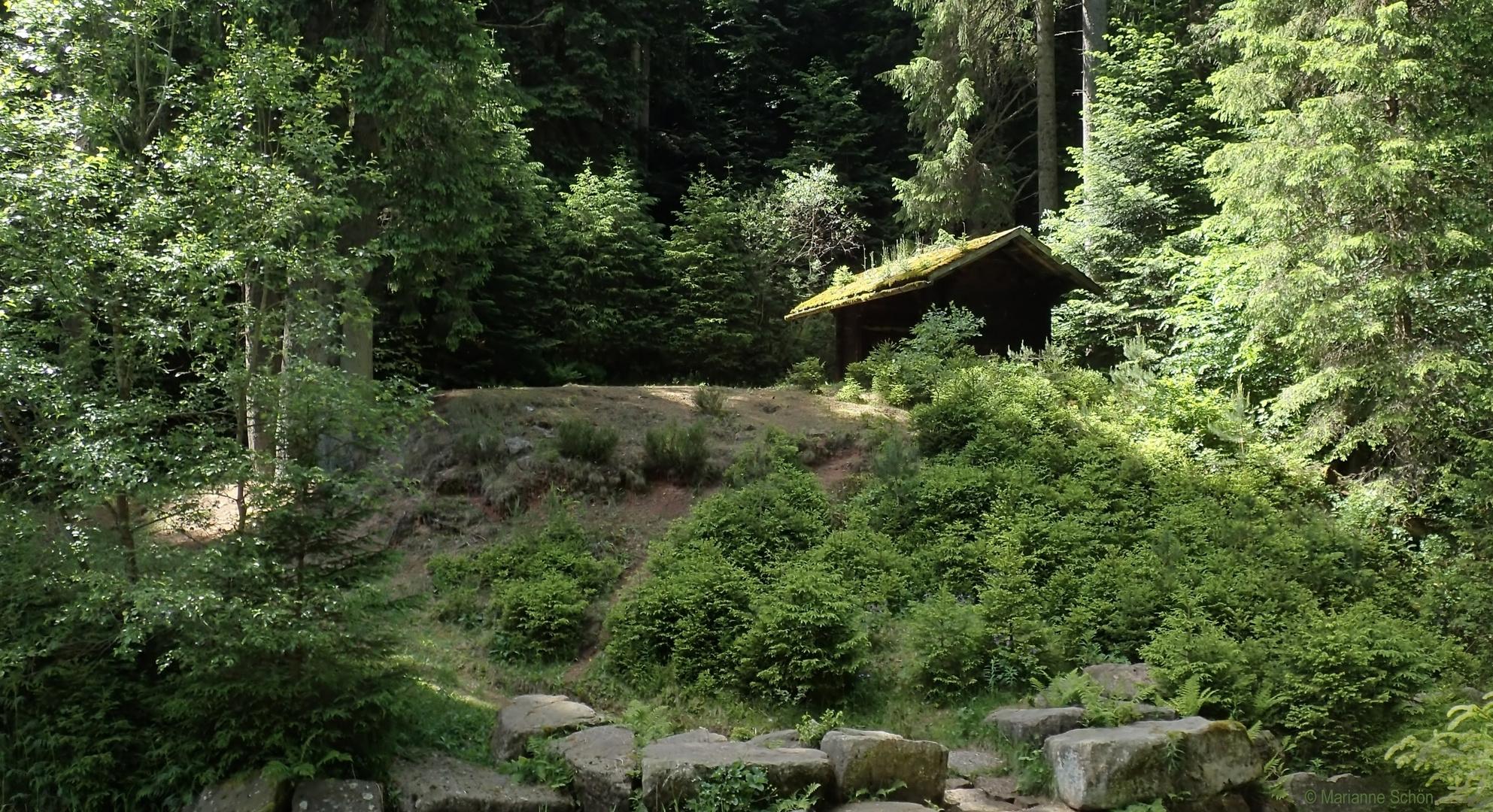 Die Waldhütte vom Poppelsee Foto & Bild | wald, wasser
