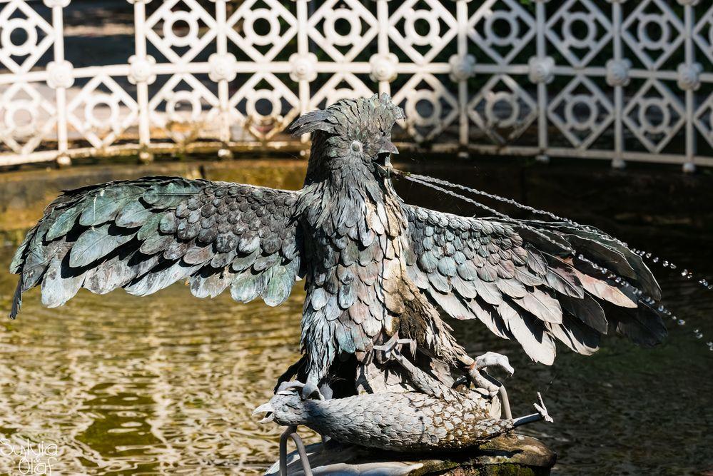 """""""Die Wasserspeienden Vögel"""""""