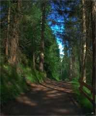 Die Wege am Crestasee # Los caminos del lago Cresta