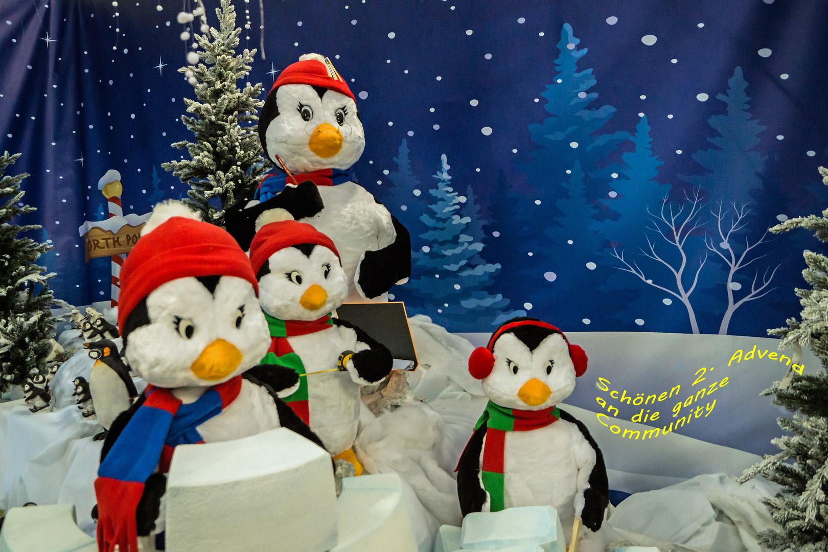 Die Weihnachtsschule Foto & Bild | winterlandschaft, motive ...