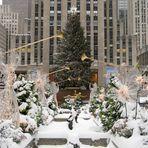 die Weihnachtszeit beginnt...(1)