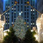 die Weihnachtszeit beginnt...(2)