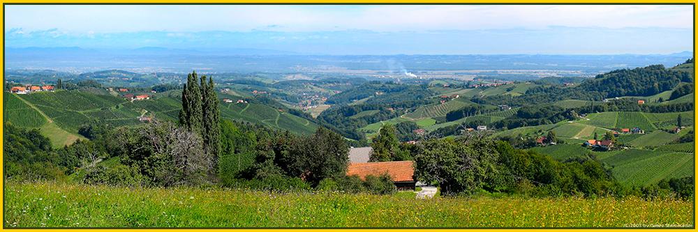 Die Weinberge geben dieser Landschaft den besonderen Reiz.