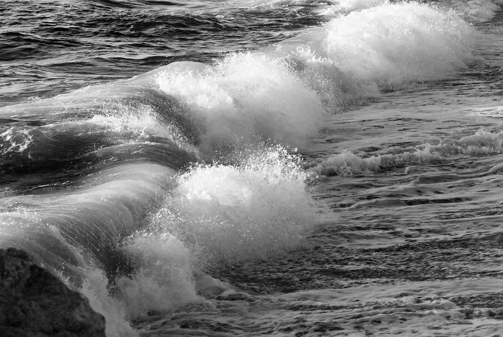 """""""Die Welle beugt sich jedem Winde gern"""""""