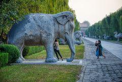 Die Welt ist elefantastisch (II)