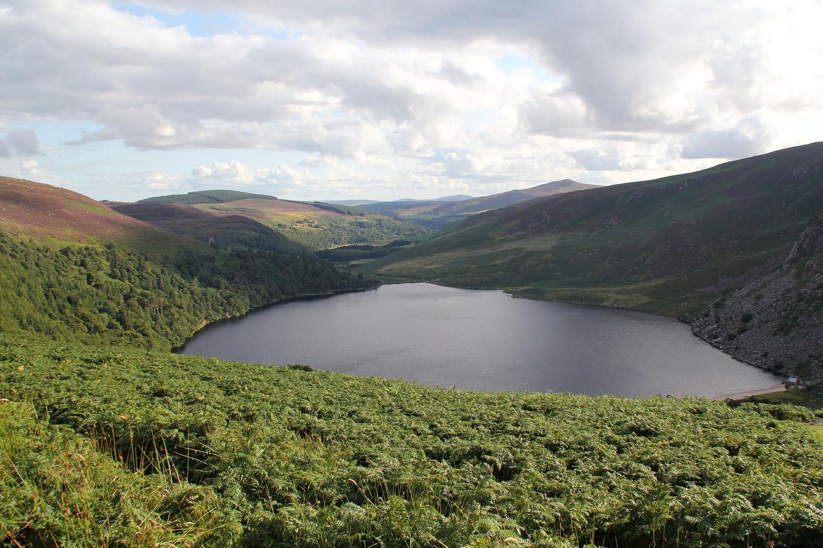 Die Wicklow Mountains im Osten Irlands....