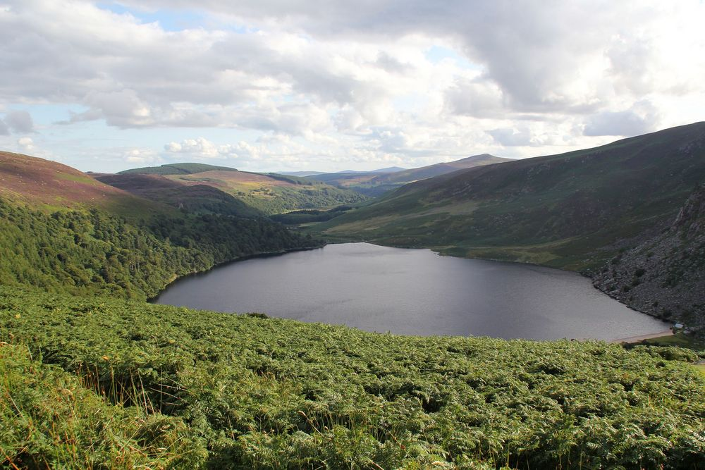 Die Wicklow Mountains im Osten Irlands....