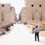 Die Widderallee vor dem Tempel von Karnak in Ägypten