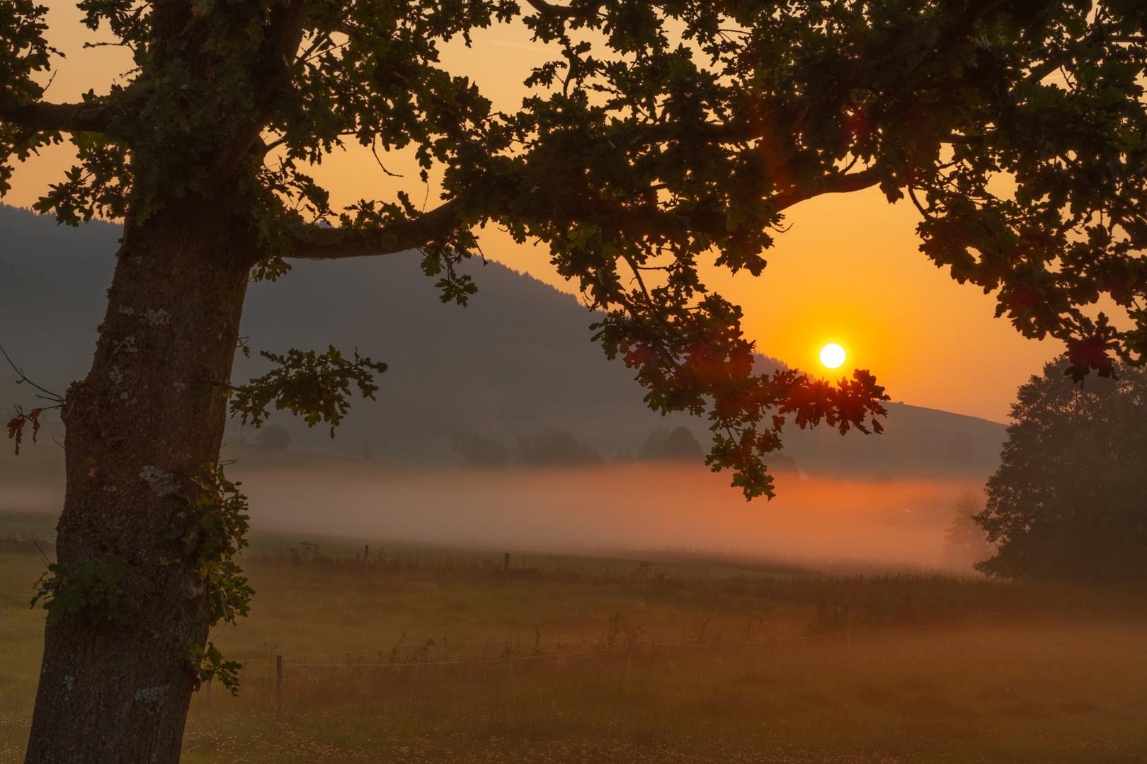 Die Wiege der Sonne...