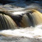 Die wilden Wasser der Vydra
