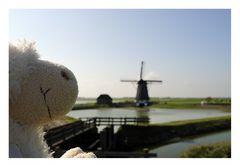 Die Windmühle auf Texel