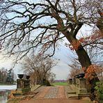 Die Wolfsbrücke im Wörlitzer Park