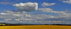Die Wolke...