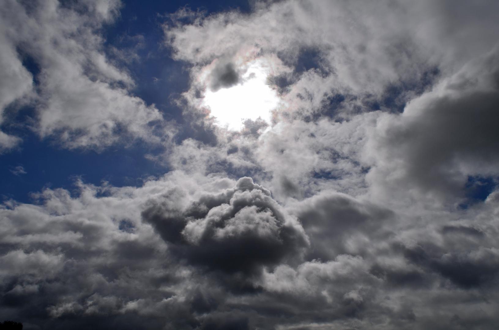 Die Wolke wie ein Gesicht das zur Sonne aufschaut...