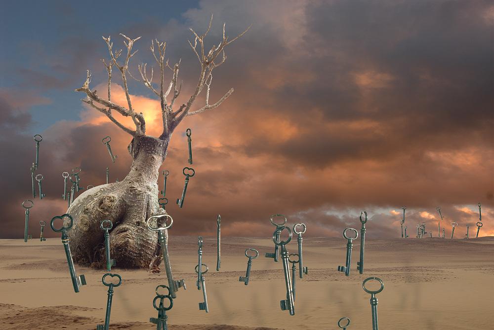 Die Wüste der verlorenen Schlüssel