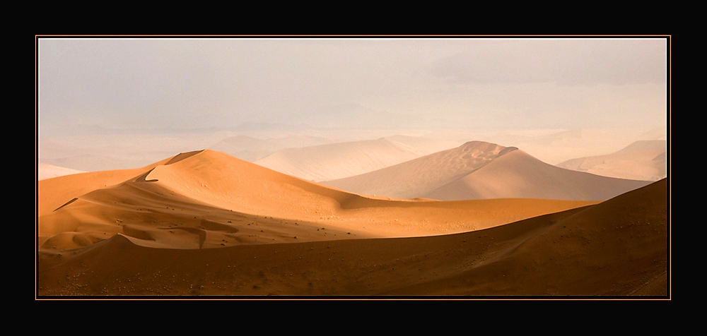 Die Wüste lebt . . .