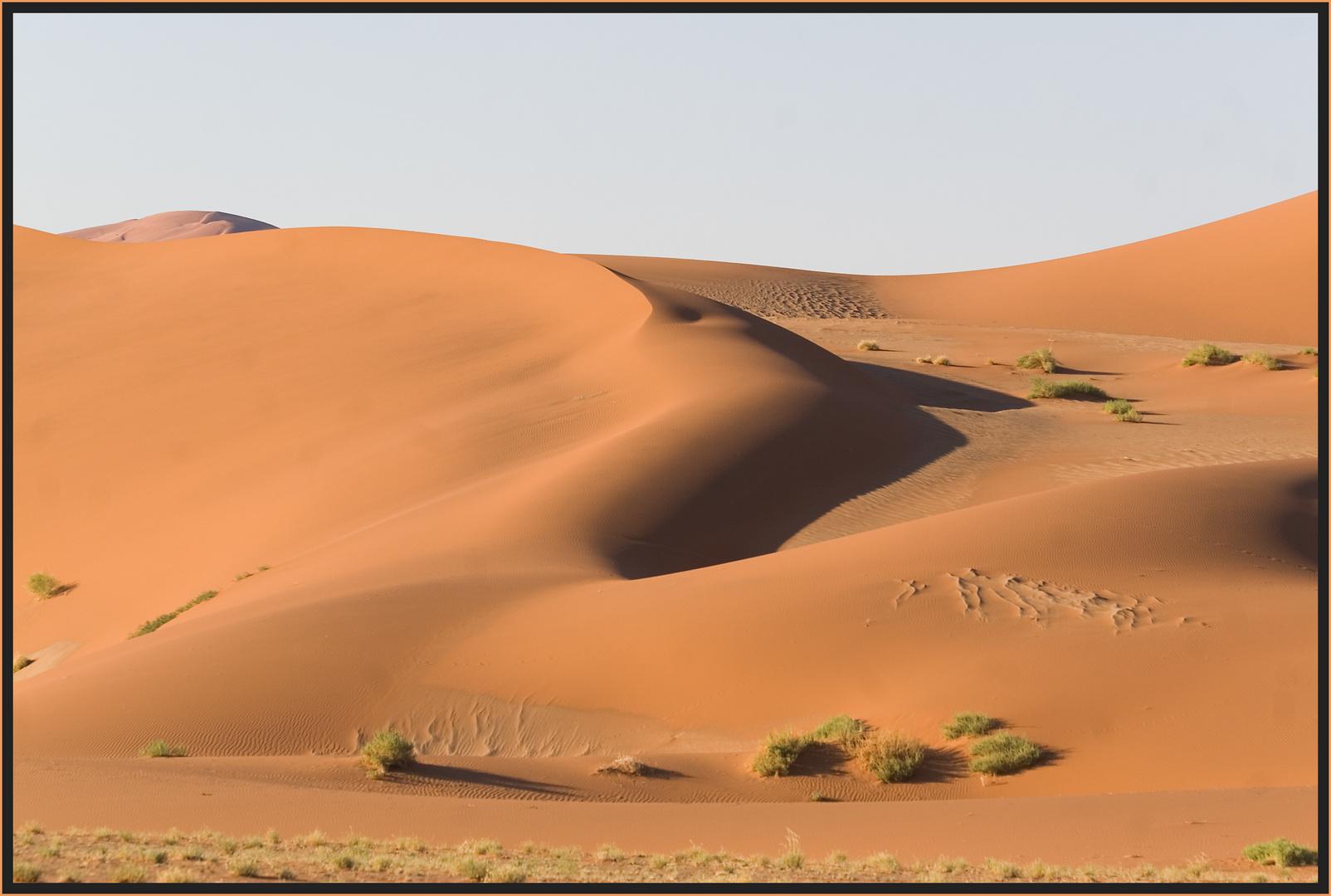 Die Wüste Namib auf dem Weg zum Sossusvlei