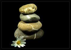Die Zeit der Steine