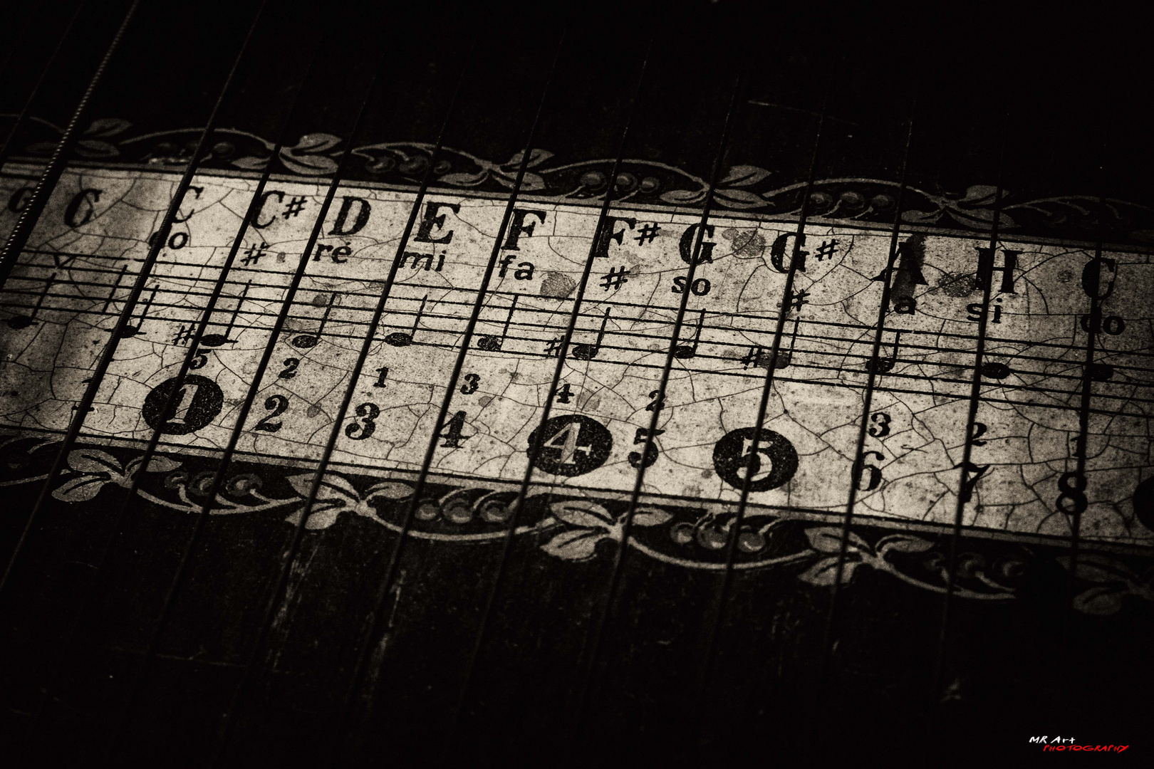 Die Zither
