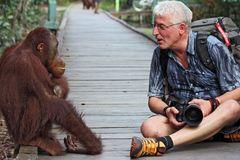 Die Zukunft der Regenwälder Borneos?