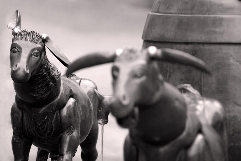 Diekirch Donkey