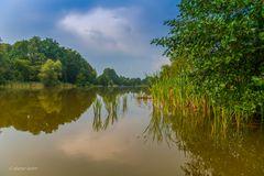Dienstag ist Spiegeltag - Heidesee in Müden