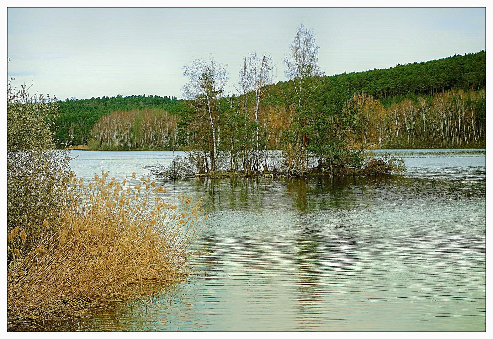 Dienstag Spiegeltag- Vogelinsel im Igelbachsee