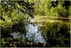 Diese Teichlandschaft