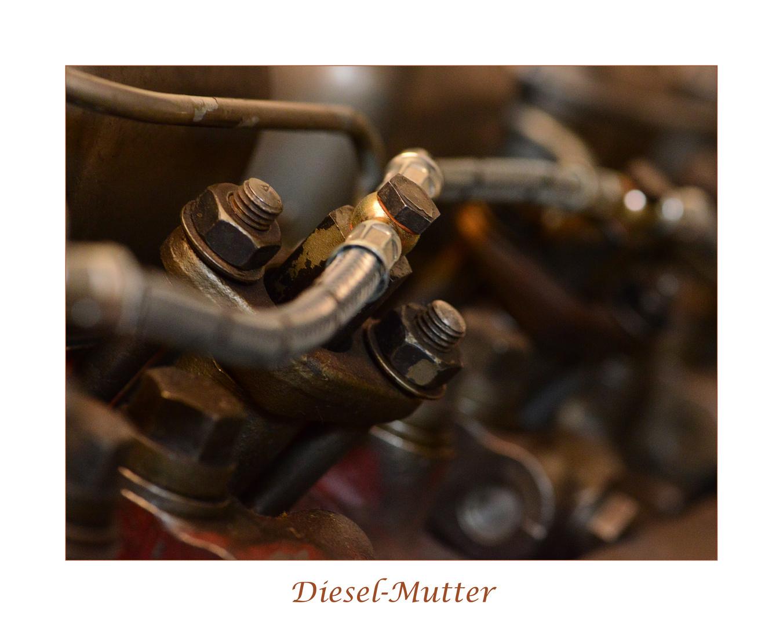 Diesel-Mutter