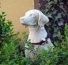Dieselhund