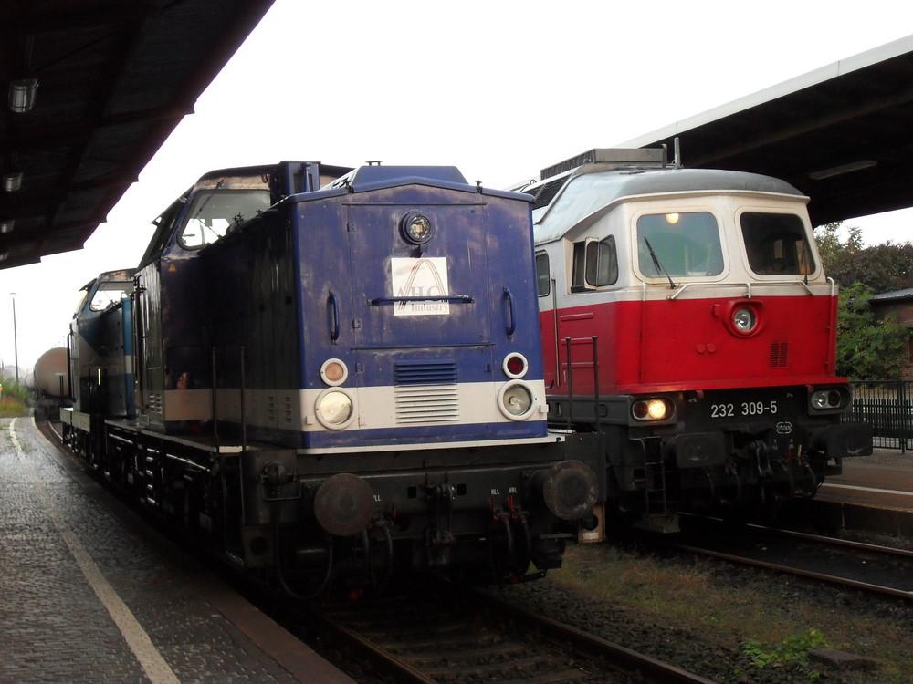 Dieselloktreffen in Forst/ L. [2009|09|30]