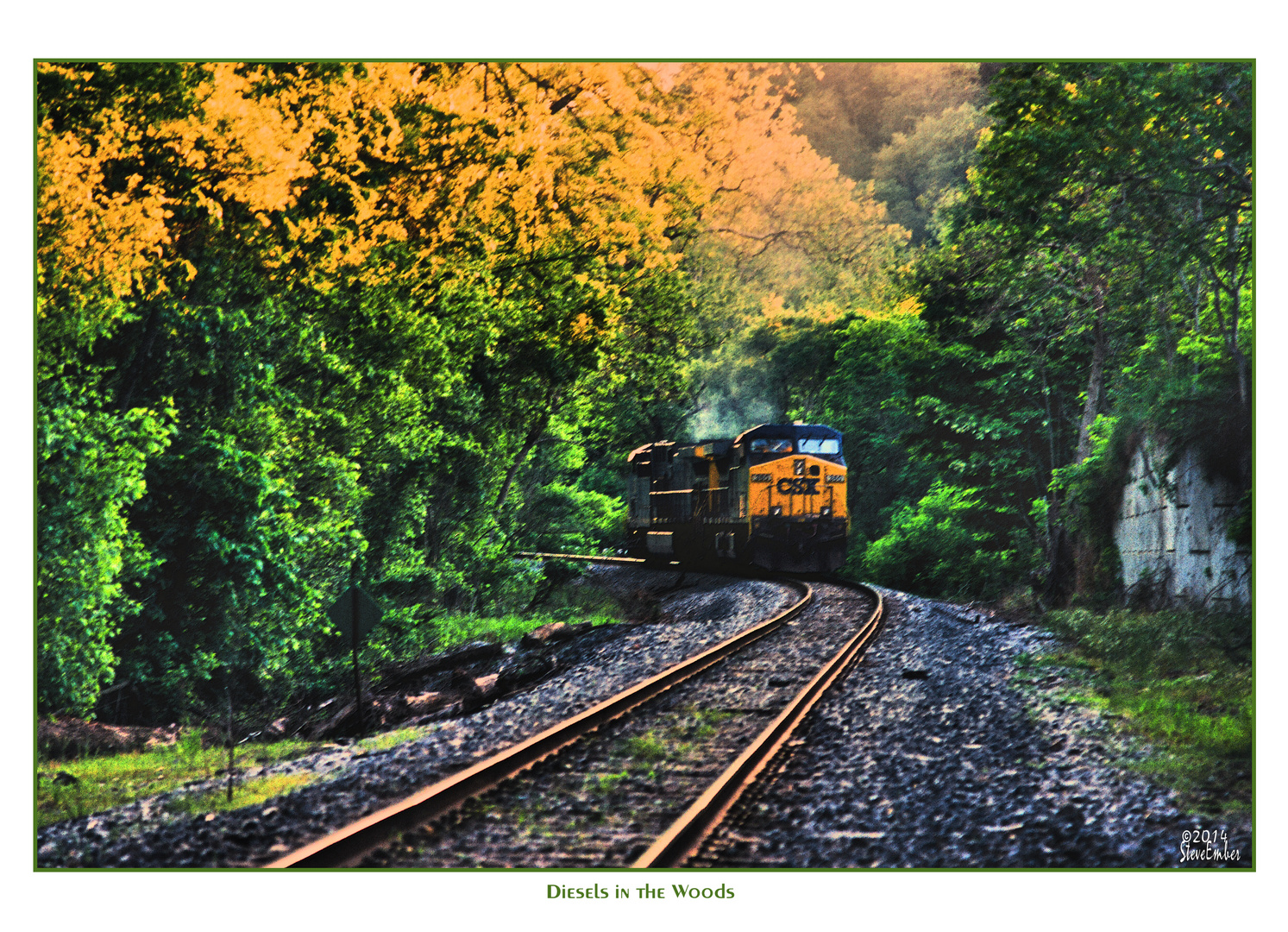 Diesels in the Woods - an Impression
