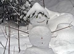 Dieser Mann wohnt im Wald! - Bonhomme de neige dans la forêt!
