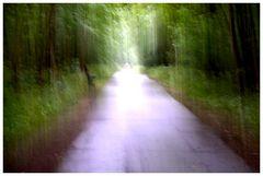 Dieser Weg ...