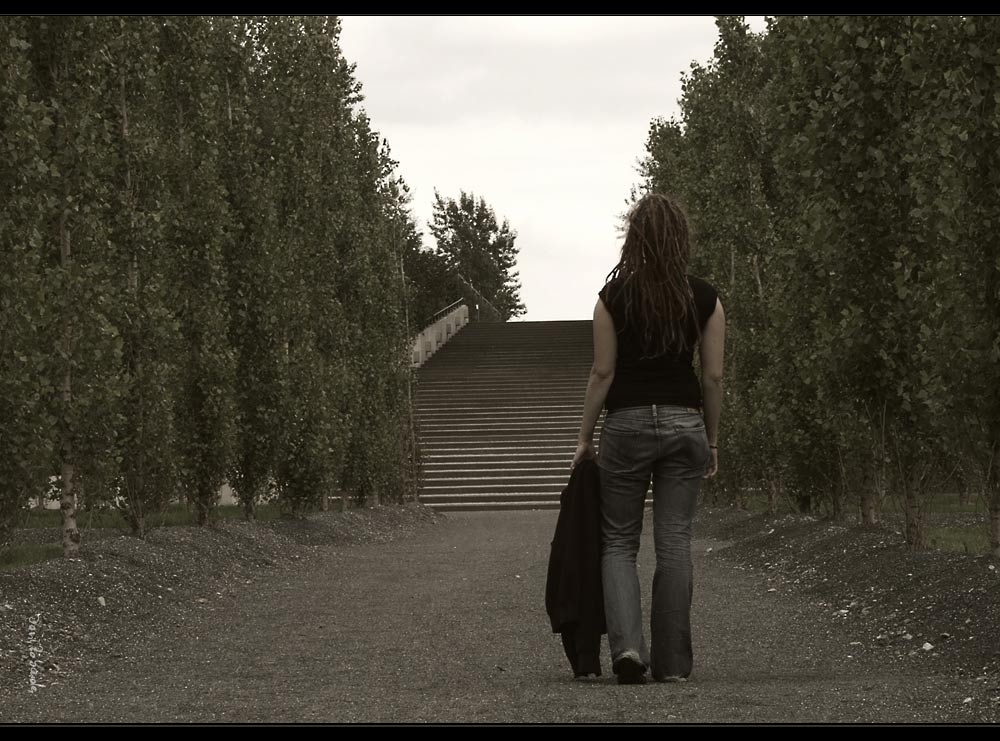 Dieser Weg.......