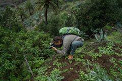 Dieter beim Fotografieren einer endemischen Jasminart