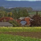 Dietmannsdorf bei Horn Waldviertel NÖ Ganz verschlarfenes Dorf
