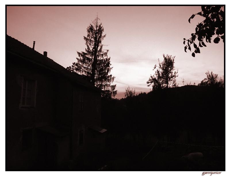 Dietro la mia casa in campagna a Tiglieto (tra Genova e Ovada) ...