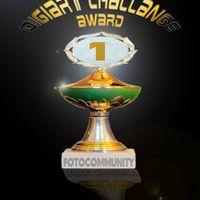 DigiArtChallange-Pokal
