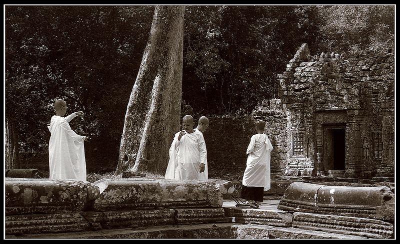 Digital Monks