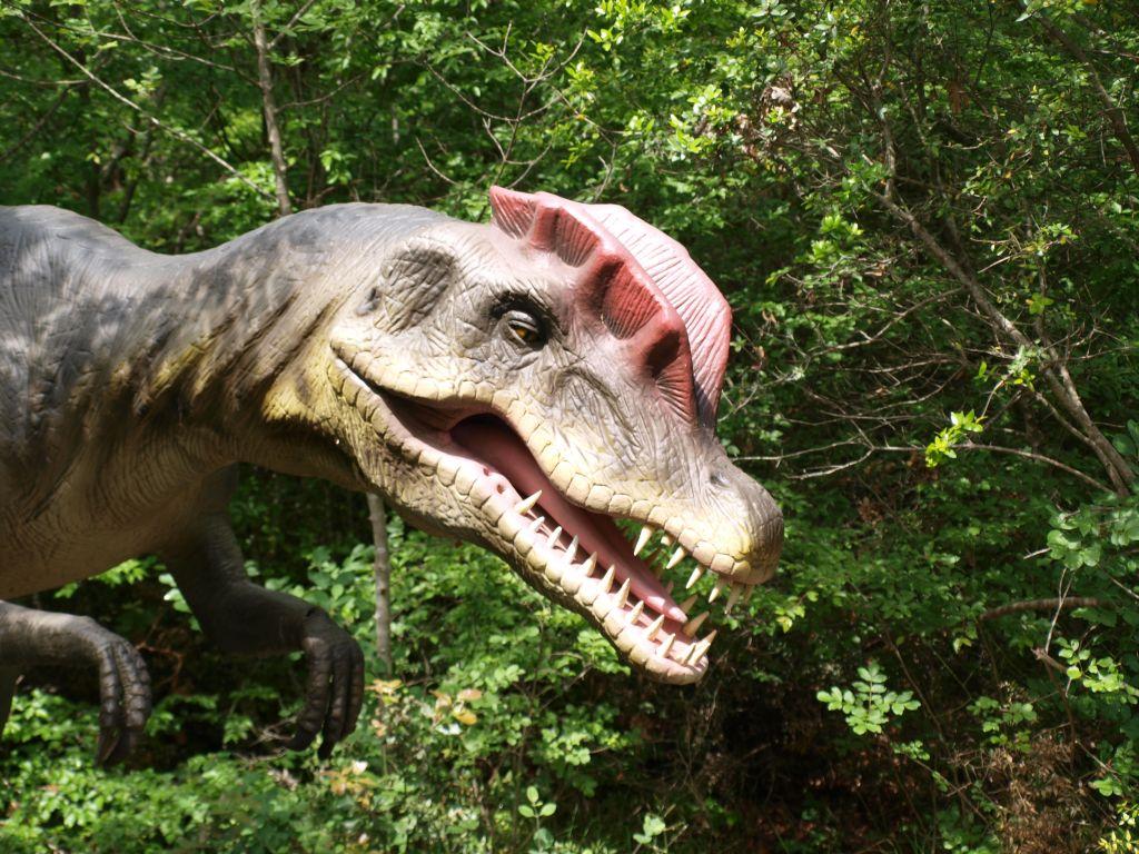 Dinopark in Funtana