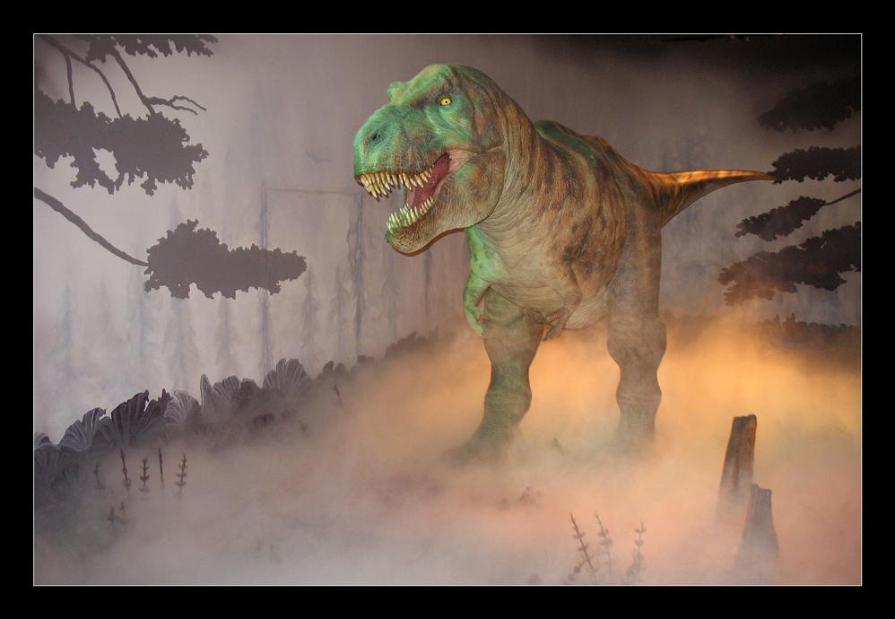 Dinos im Natural History Mueseum