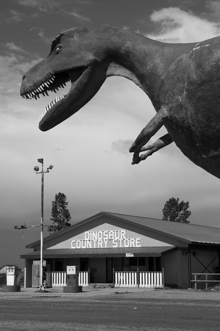 Dinosaur Country Store