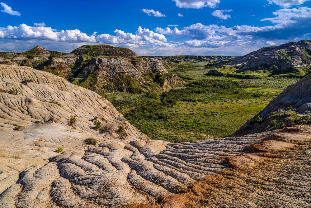 Dinosaur Provincial Park 4, Alberta, Kanada