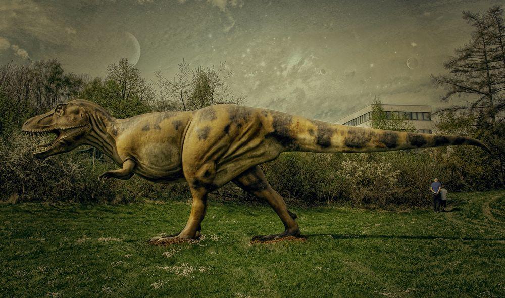 dinosaurier trex foto  bild  himmel natur landschaft