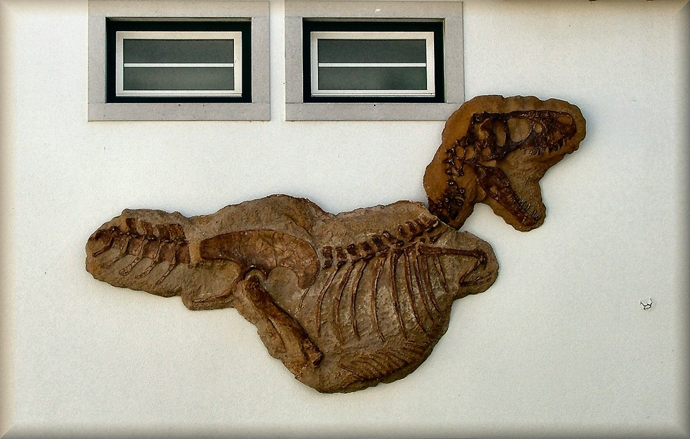 Dinosssauro  sul muro.