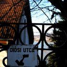 Diósi street