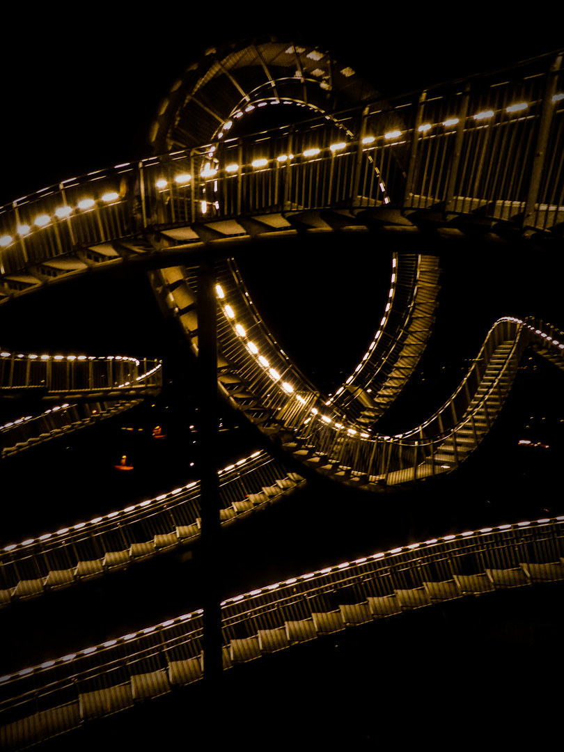 DIRECTIONS (Tiger & Turtle)