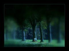 """DIRK GEWIDMET UND... (zum Totensonntag)  - AUSSTELLUNGS-FOTO """"WERDEN UND VERGEHEN"""""""